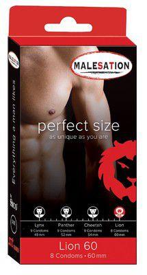 MALESATION Lion 60, 8 Stk.